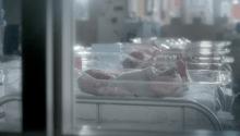 "ST VINCENTS ""Newborn"" - Reynald Gresset"